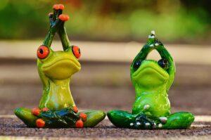 体操をするカエル